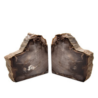 The Evolution Store Petrified Wood Bookends - ShopBAZAAR