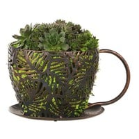 Shopping | Coffee Cup Cross Hatch Planter