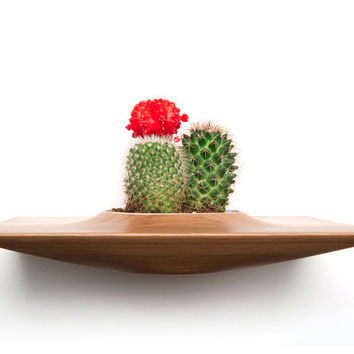 PLANT PODS - Bring Life & Beautiful Design to your Room