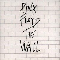 The Wall: Pink Floyd: Amazon.it: Musica