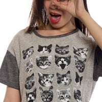 Cutest Kitten Short Sleeve Terry Top - Gray