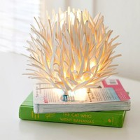 Coconut Shell Table Lamp | PBteen