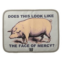 Does This Look Like The Face of Mercy? Grumpy Pig