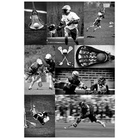 Lacrosse Collage Wall Mural