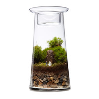 Our Wedding - Terrarium Centerpiece Kit