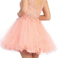 Louvre Lace Party Dress in Blush
