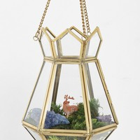 Magical Thinking Hanging Terrarium - Urban Outfitters