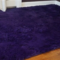College Plush Rug - Downtown Purple Cheap Carpet Floor Essentials Comfy Feet Soft Dorm