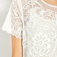 Dainty Mesh Embroidered Top