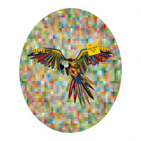 Sharon Turner Harlequin Parrot Oval Magnet Board