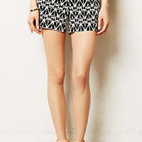 Lithographe Shorts