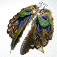 Feather Earrings Peacock & Pheasant Feathers by LarkinAndLarkin