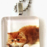 Fat Cat Glass Tile Pendant Necklace 7/8 inch Square Animals | LittleApples - Jewelry on ArtFire