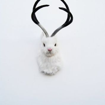 The Luiza| Faux Luiza Jackalope | Mounted Jackalope | White Jackrabbit with Atlers | Faux Taxidermy | Animal Head Wall Hanging Sculpture | Animal Mounts | Trophy Taxidermy