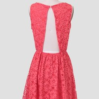 Parisian Spring Lace Dress