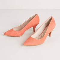 Suede Melon Pumps