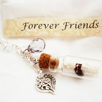 Friendship Necklace, Glass Bottle, Secret Scroll, Message In A Bottle, Personalized Necklace, Silver Chain Necklace, Free Shipping in USA