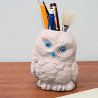 Hootin' and Holdin' Desk Organizer