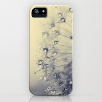 dandelion iPhone & iPod Case by ingz