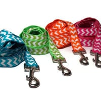 Bright Chevron Leashes in Pink, Green, Blue and Orange