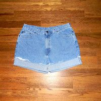Vintage Denim Cut Offs, 90s Classic Light Stone Washed Jean Shorts, High Waisted Cut Off/Frayed/Rolled up/Distressed Plus Size Shorts Sz 18
