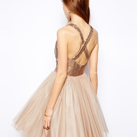 Coast Paparazzi Dress in Sequin and Tulle