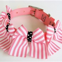 Pink Collar- Classic Pink Stripes- Collars, Leads & Harnesses - Ribbon Collars Posh Puppy Boutique