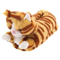 Orange Tabby Cat Animal Slippers for Women and Men Medium