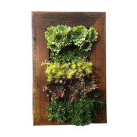 Reclaimed Vertical Garden Display Box
