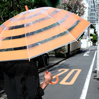 Evangelion: 2.0 You Can (Not) Advance: A.T. Field Vinyl Umbrella