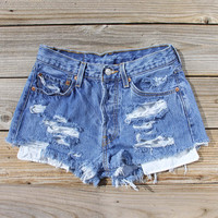 Vintage Distressed Shorts