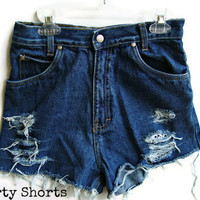 High Waisted Shorts Lace Size 0 by shortyshorts on Etsy