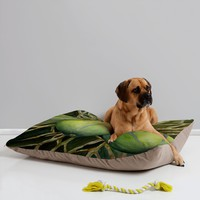 DENY Designs Rosie Brown Coconuts Cuddling Pet Bed