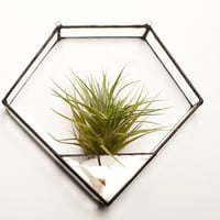 Diamond Geometric Stained Glass Terrarium
