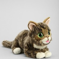 Lil BUB Plush Toy - Urban Outfitters