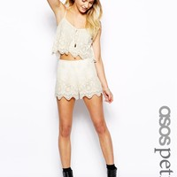 ASOS Petite | ASOS PETITE Exclusive Embroidery Mesh Shorts at ASOS