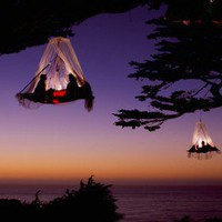 Tree Tent