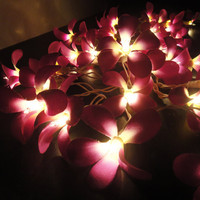 35 Flowers Purple Frangipani Fairy Lights String by marwincraft