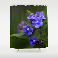 Omphalodes verna - JUSTART © Shower Curtain by JUSTART  * Syl *