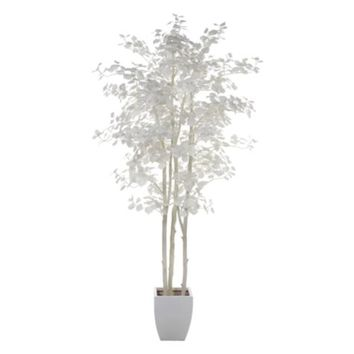 Aspen Tree | Botanicals & Plants | Accessories | Decor | Z Gallerie
