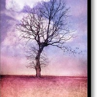 Atmospheric Tree - Early Spring Canvas Print