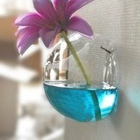 Wall Mount Hanging Vase & Fish Bowl Transparent Glass Hydroponic Decoration Vase