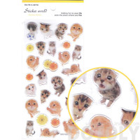 Adorable Baby Kitten Animal Shaped Cat Photo Jelly Stickers for Scrapbooking and Decorating - Baby Kitten Shaped Transparent Stickers