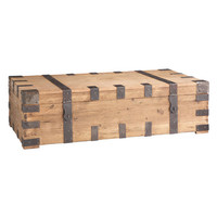 Well-Travelled Trunk Coffee Table | Wisteria