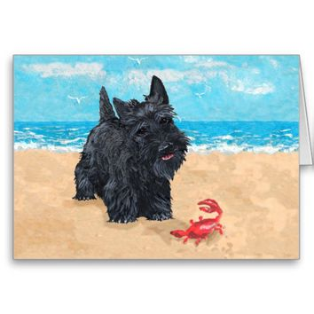 Little Scottie Finds a Crab at the Beach