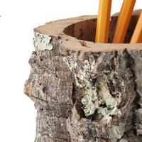 The Green Head - Cork Bark Pencil Holder / Desktop Receptacle