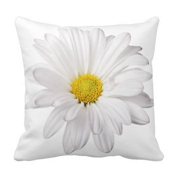 White Daisy Flower Background Customized Daisies