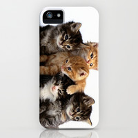 kitten iPhone & iPod Case by Max Jones | Society6