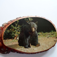Vintage Black Bear Wood Sign1970s