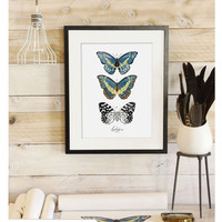 Vintage Inspired Science Print - Lepidoptera VOL 2